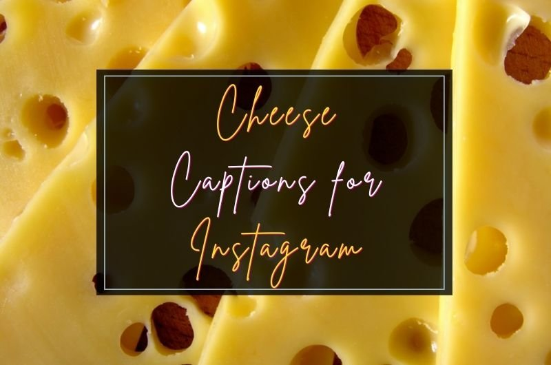 cheese captions for instagram